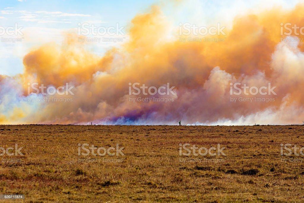 Heather burning stock photo