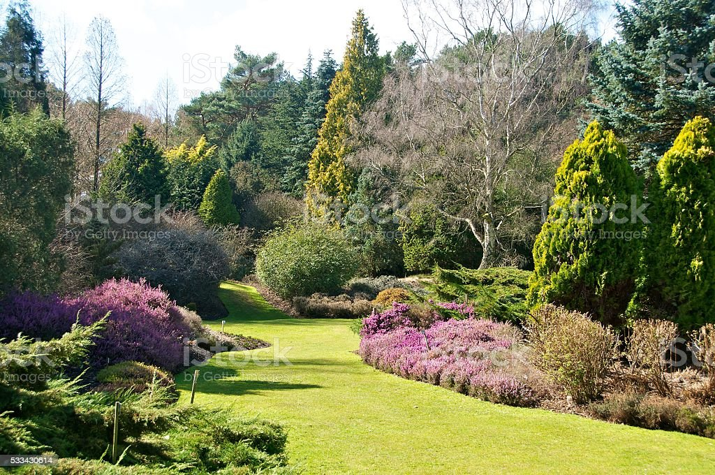 Heather garden, Valley Gardens, UK stock photo