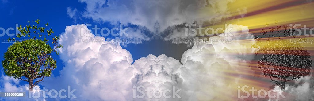 Heaven contrasts stock photo