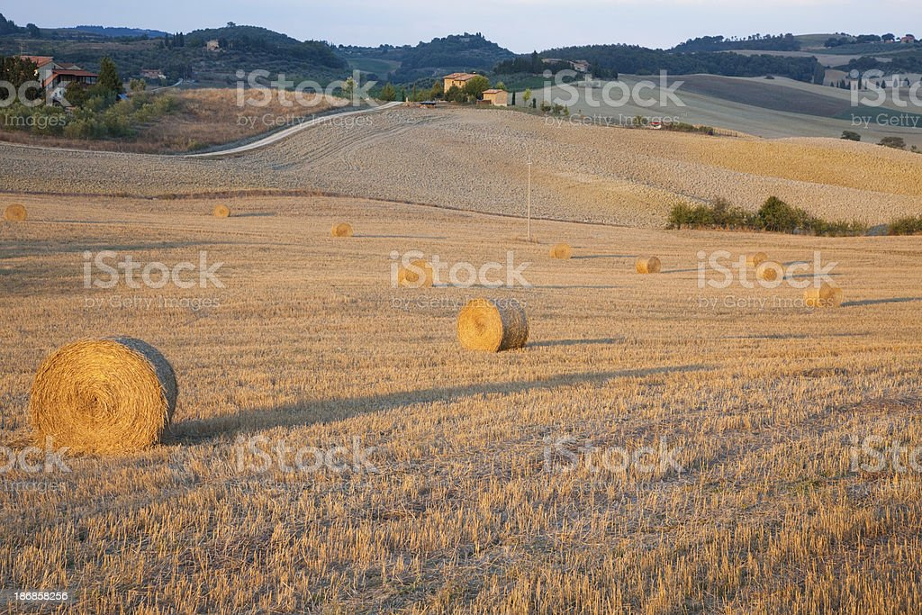 Heavenly landscape in Toscana royalty-free stock photo