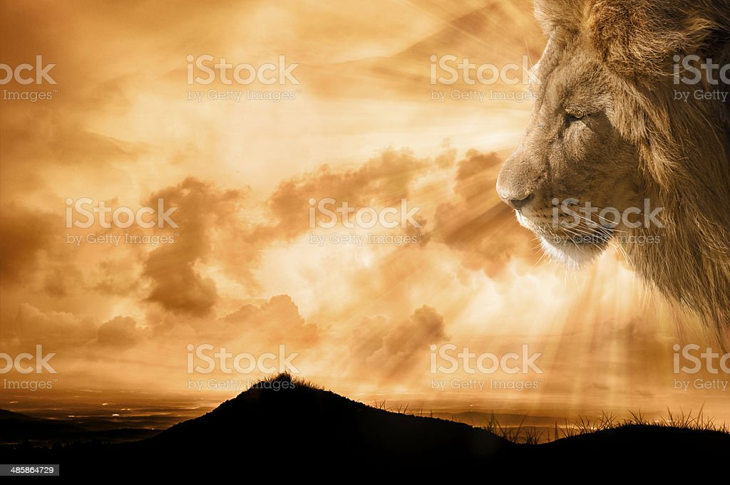 Heavenly Lion Over Lookng the Earth stock photo