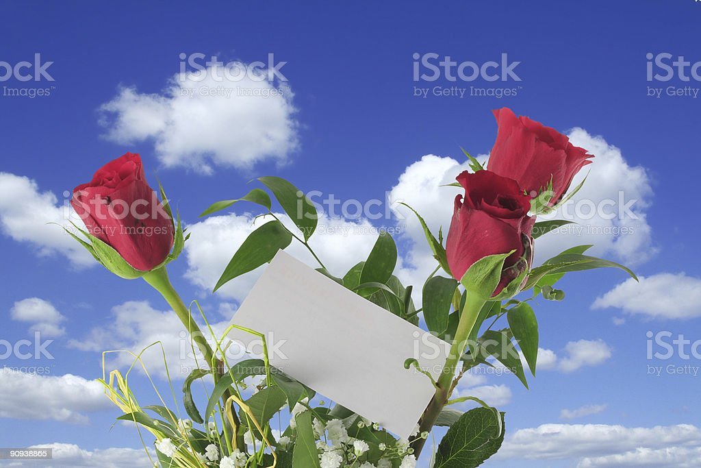 heavenly roses with blank note stock photo
