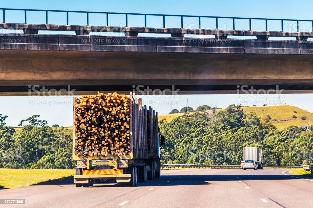 Heavy Cargo on the Road transporting logs stock photo