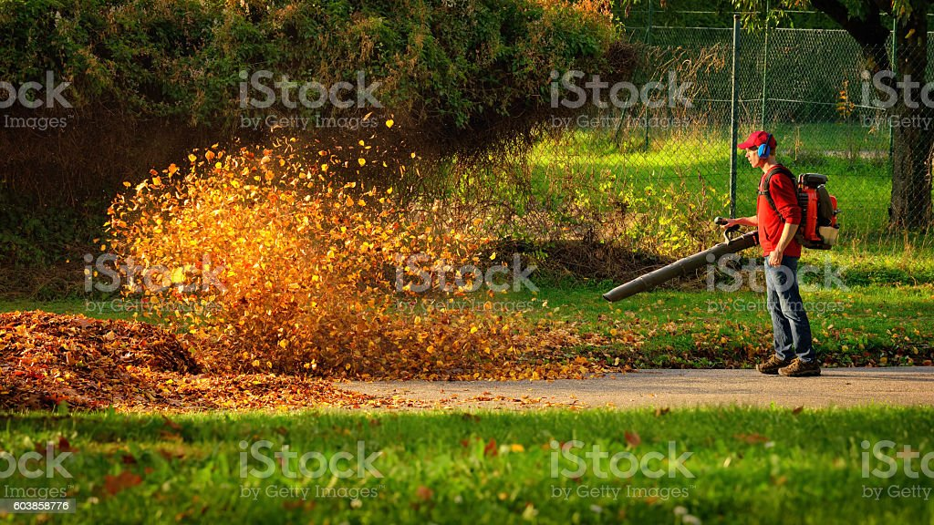 Heavy duty leaf blower in action stock photo