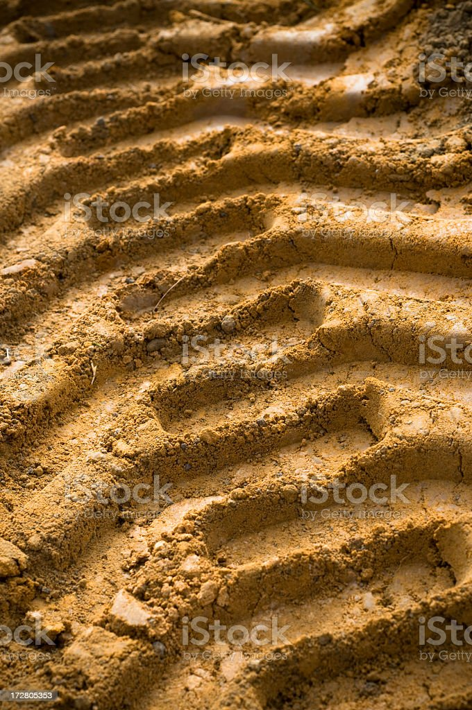 Heavy Machinery Track in Mud royalty-free stock photo
