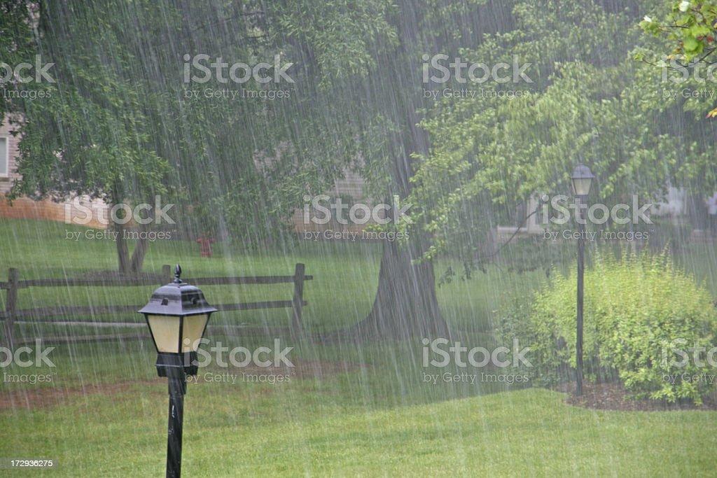 Heavy rain in  the park stock photo