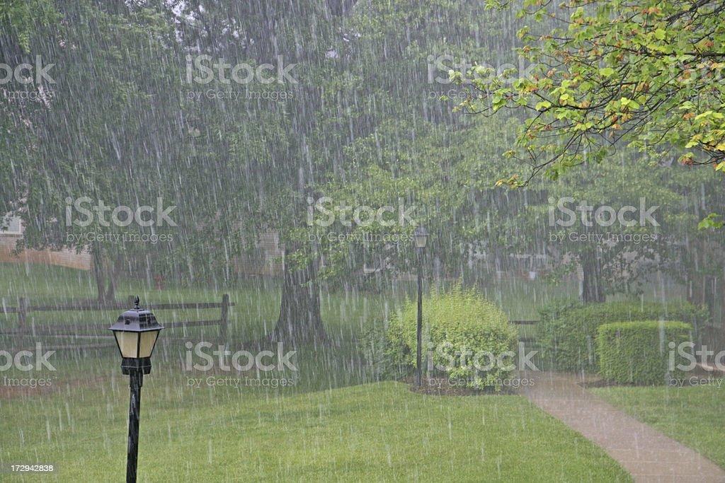 Heavy rain in the park royalty-free stock photo