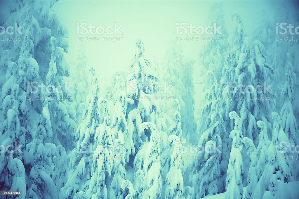 Heavy Snow in the mountains royalty-free stock photo