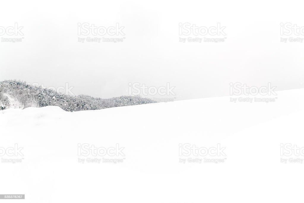 Ciężkie śniegu zbiór zdjęć royalty-free