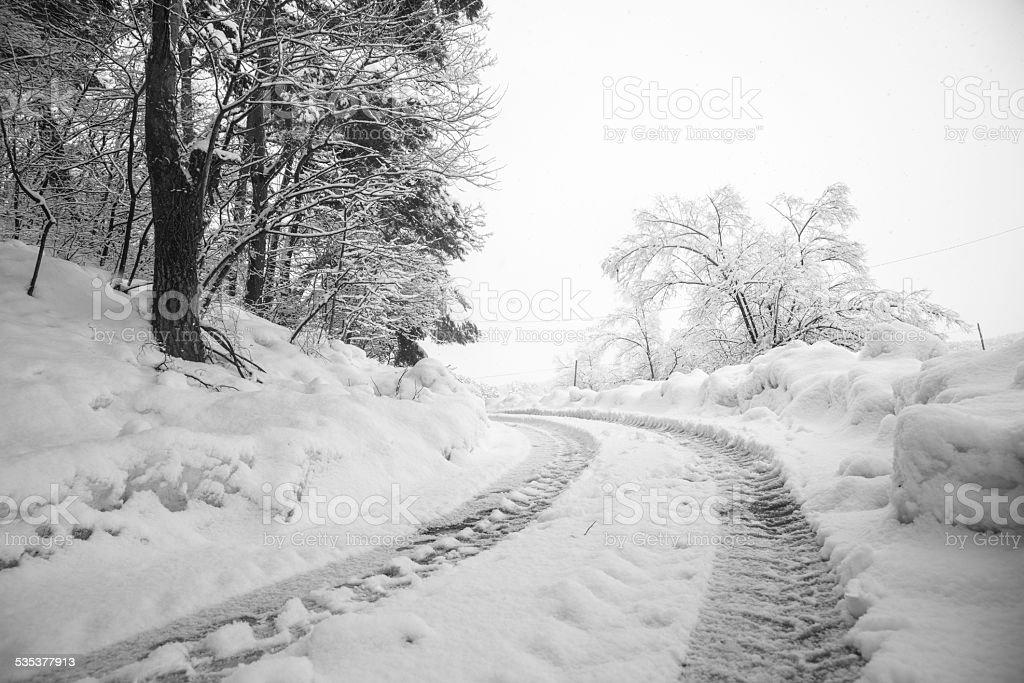 Ciężkie śniegu Scena zbiór zdjęć royalty-free