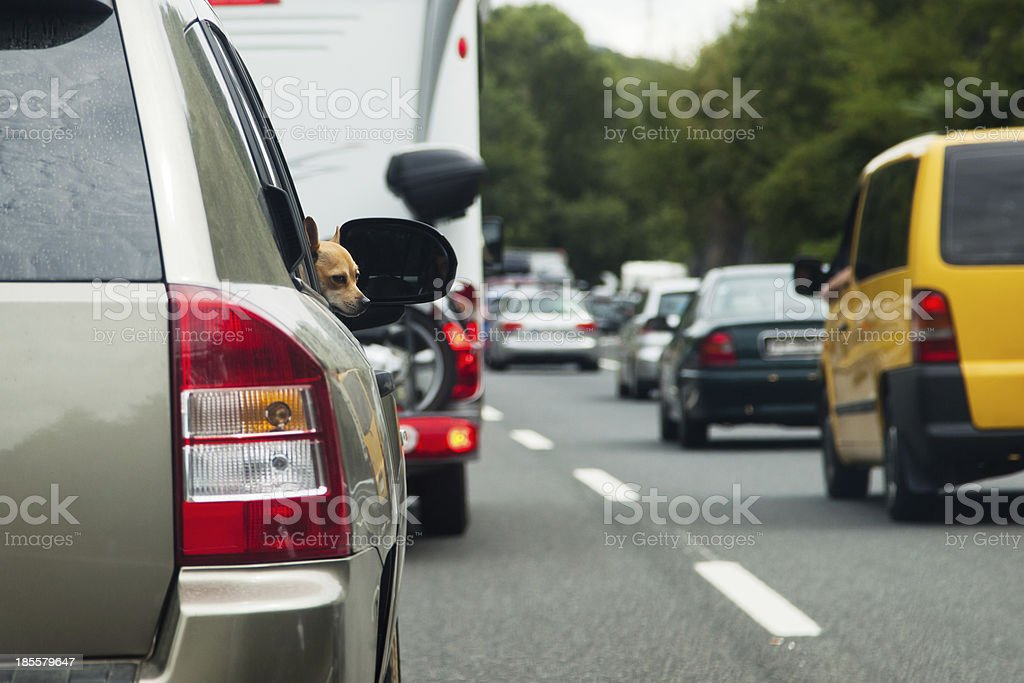 heavy traffic on a motorway stock photo