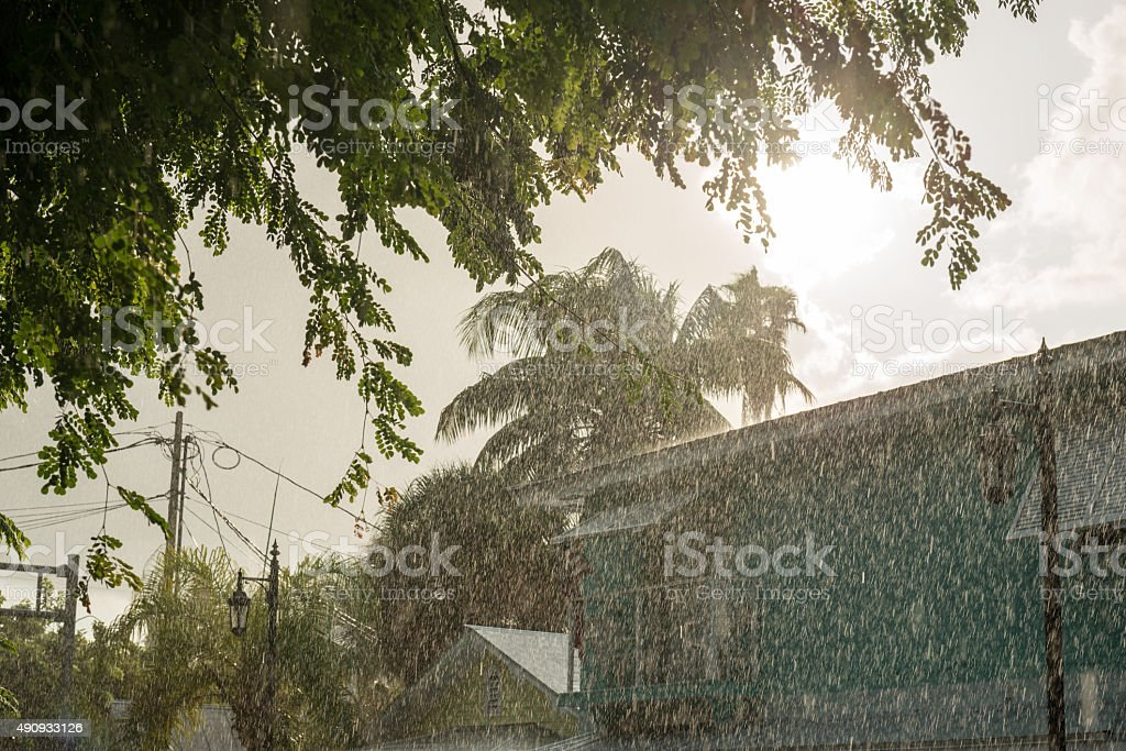 heavy tropical rain in Key West stock photo