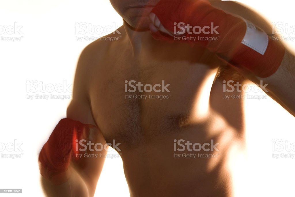 HeavyWeight Boxer on White Background - Blurred Action royalty-free stock photo