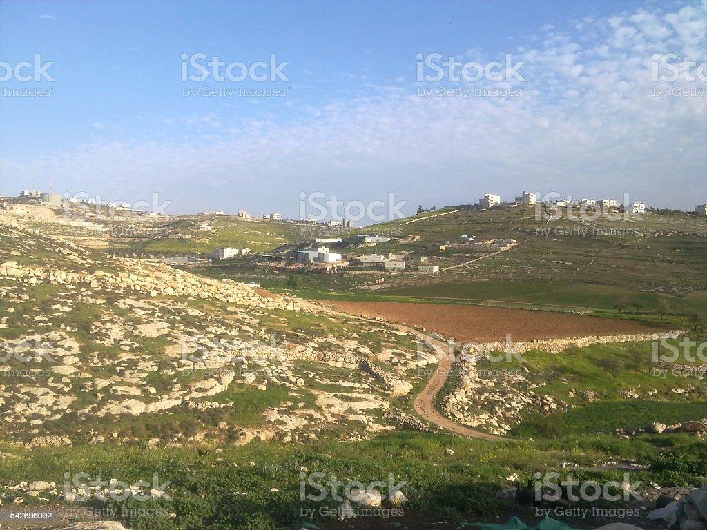 Hebron city/ Palestinian nature stock photo