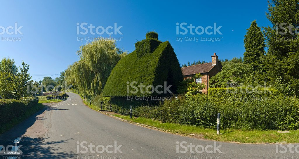 Hedge house stock photo