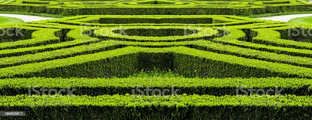 Hedge in maze style, formal or ornamental garden and park royalty-free stock photo