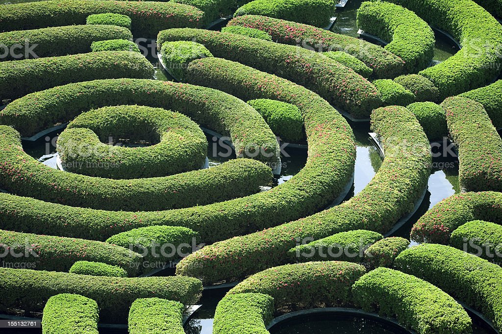 A hedge maze viewed from above.