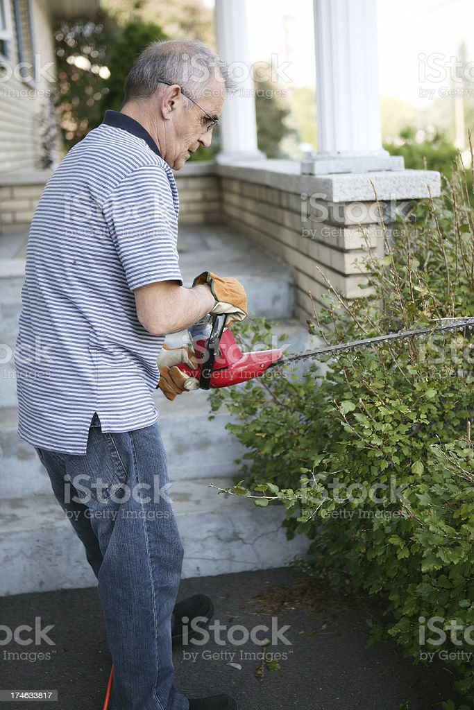 Hedge trimming royalty-free stock photo