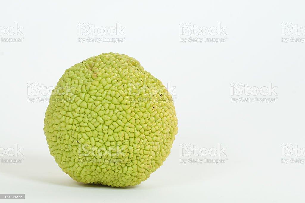 Hedgeball stock photo