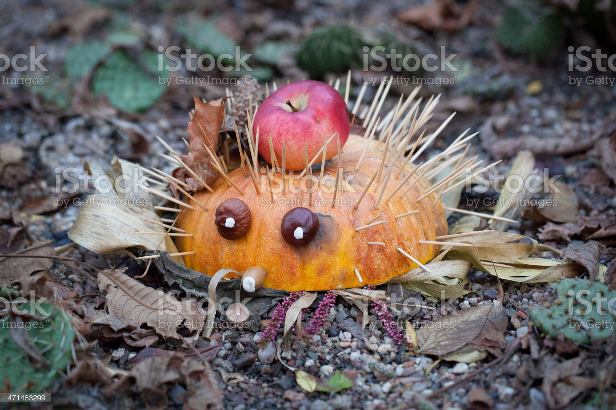 Hedgehog made of pumpkin royalty-free stock photo