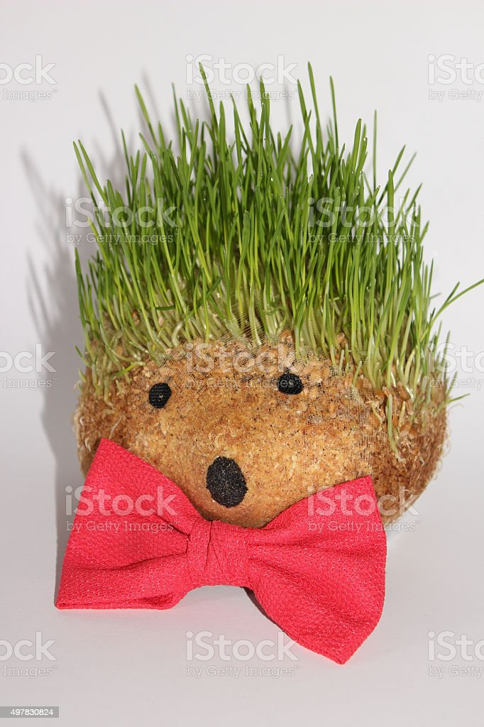 Hedgehog with red bowtie stock photo