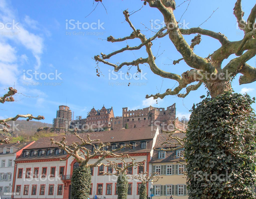 Heidelberg Town Center and Castle Ruins stock photo