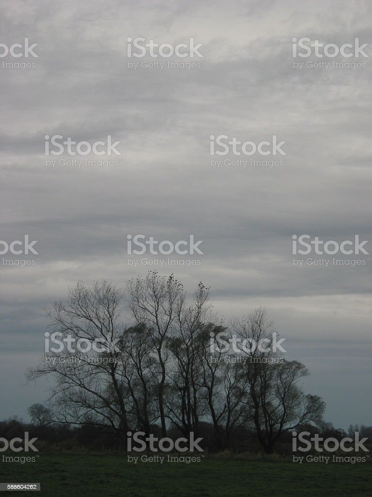 Heidkate 228 stock photo