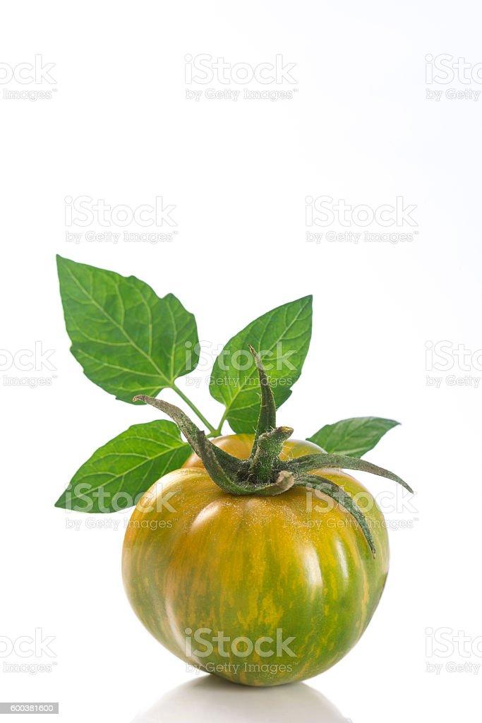 Heirloom Green Zebra Tomato on White stock photo
