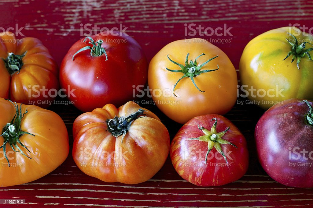 Heirloom tomatoes on rustic red wooden table background  stock photo