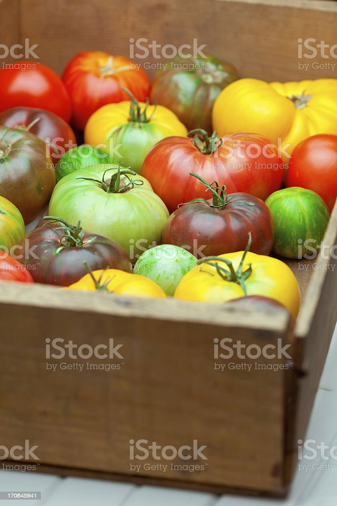 Heirloom Tomatoes royalty-free stock photo