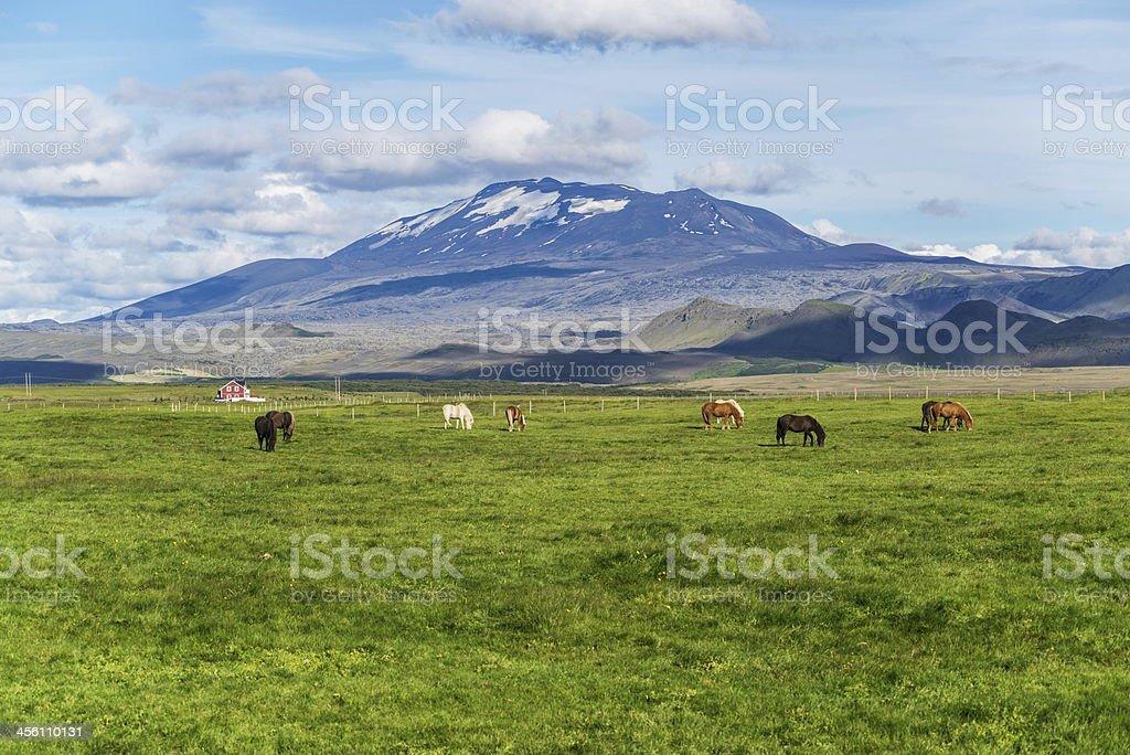 Hekla royalty-free stock photo