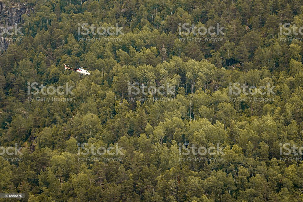 Helicopter flying above forest stock photo