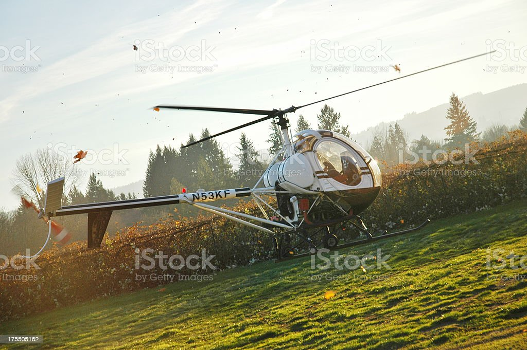 Helicopter Landing on Grass with Leafs and Dust Flying stock photo