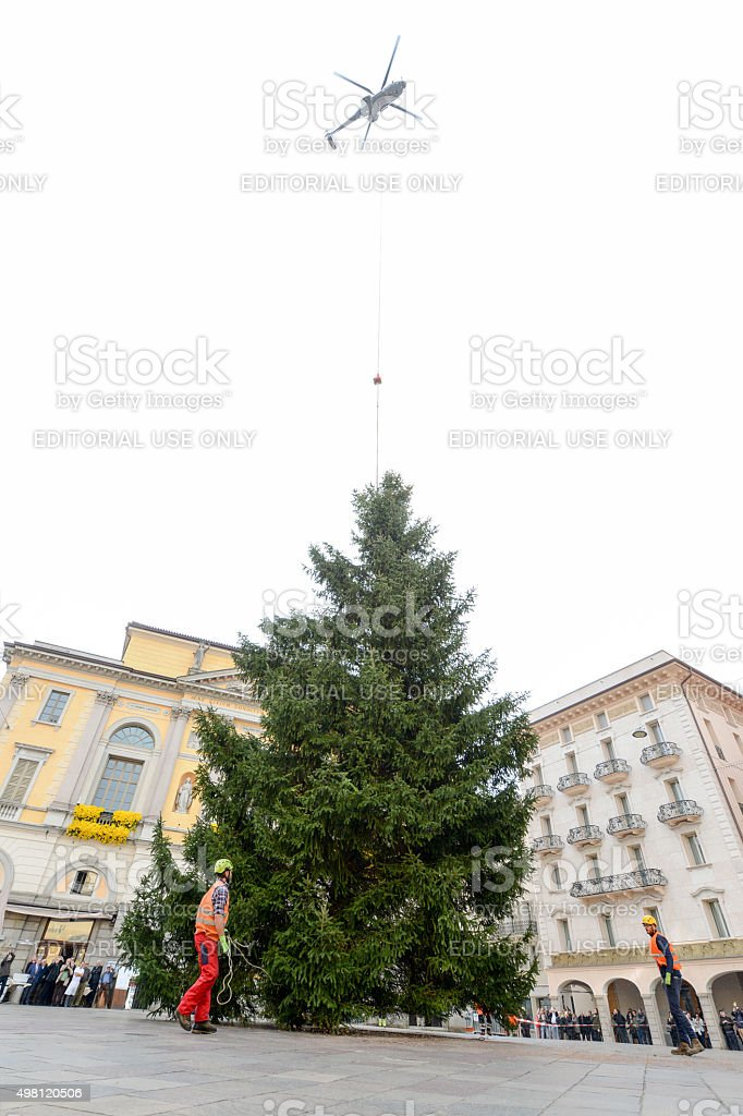 helicopter settles a Christmas tree in the central square stock photo