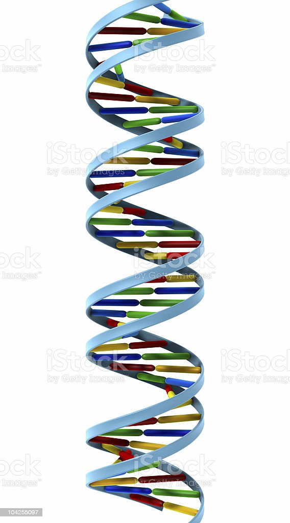 DNA helix isolated royalty-free stock photo