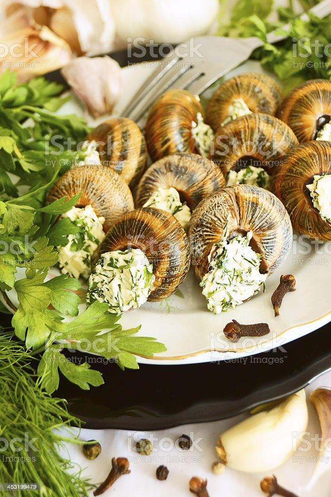 Helix pomatia with garlic and herbs. royalty-free stock photo