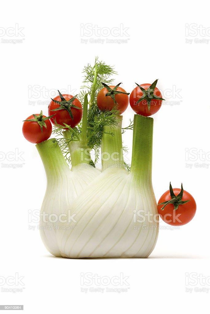 hello fennel royalty-free stock photo