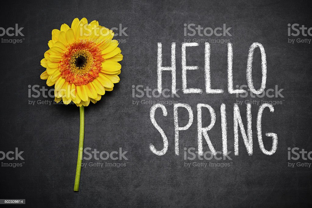 Hello Spring stock photo