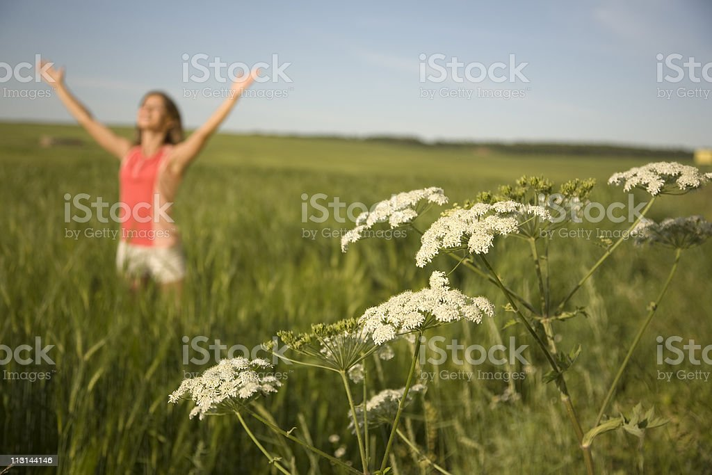 Hello summer! royalty-free stock photo
