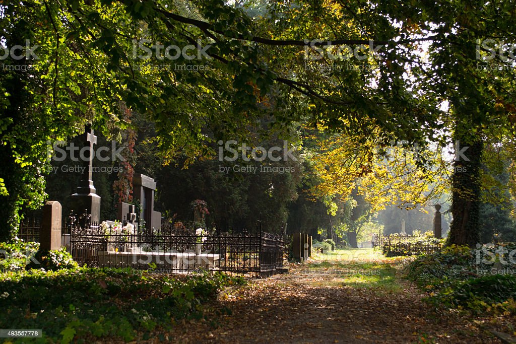 Helloween - Old cemetery stock photo