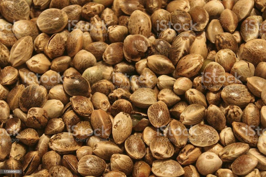 Hemp seeds royalty-free stock photo