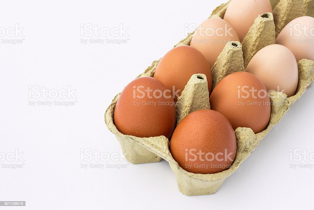 Hen eggs in a egg carton isolated on a white background stock photo