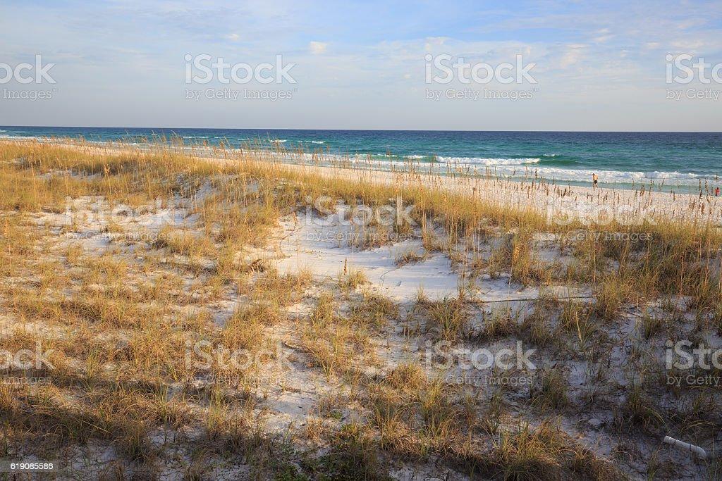 Henderson State Park beach, Florida royalty-free stock photo