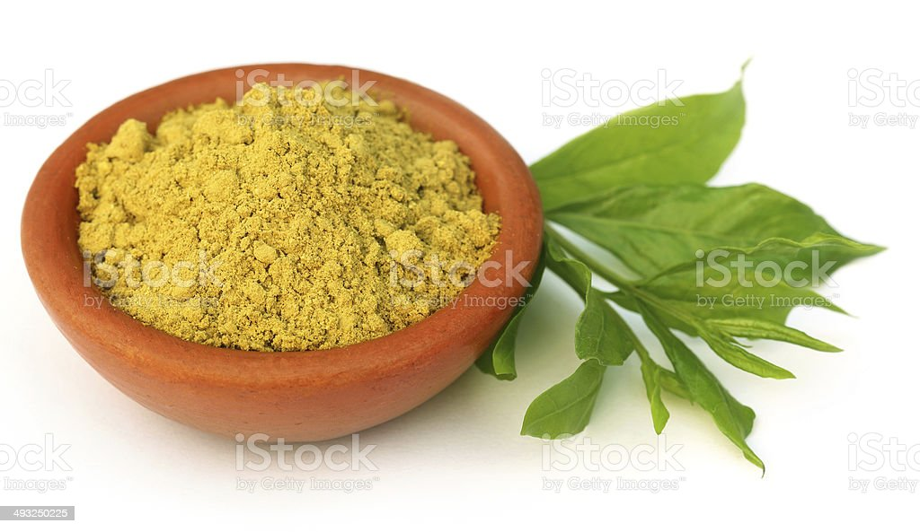 Henna leaves with sandalwood powder stock photo