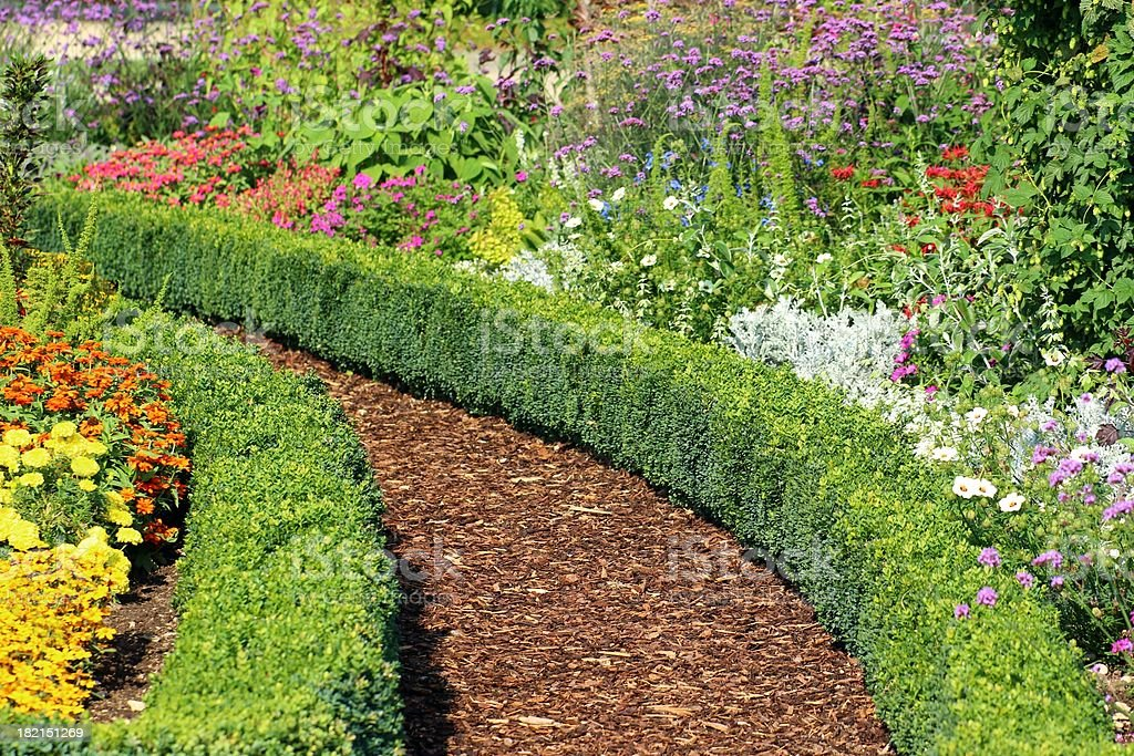 Herb and flower garden stock photo
