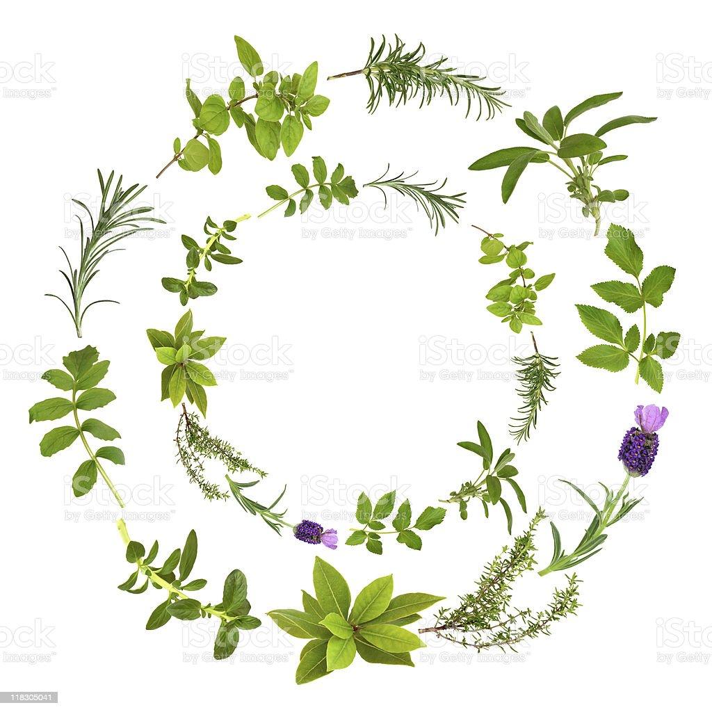 Herb Leaf Circular Design royalty-free stock photo