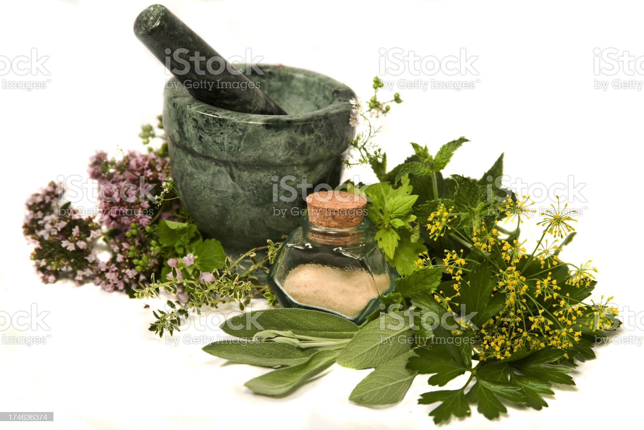 Herb Series royalty-free stock photo