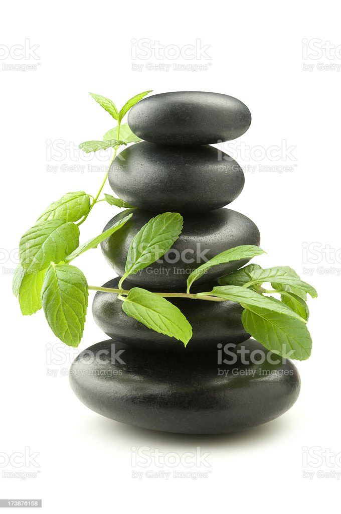 Herbal Balance royalty-free stock photo