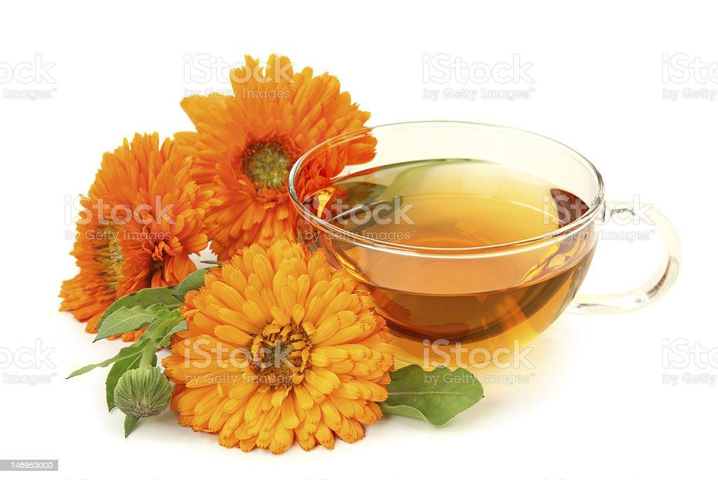 Herbal calendula tea stock photo