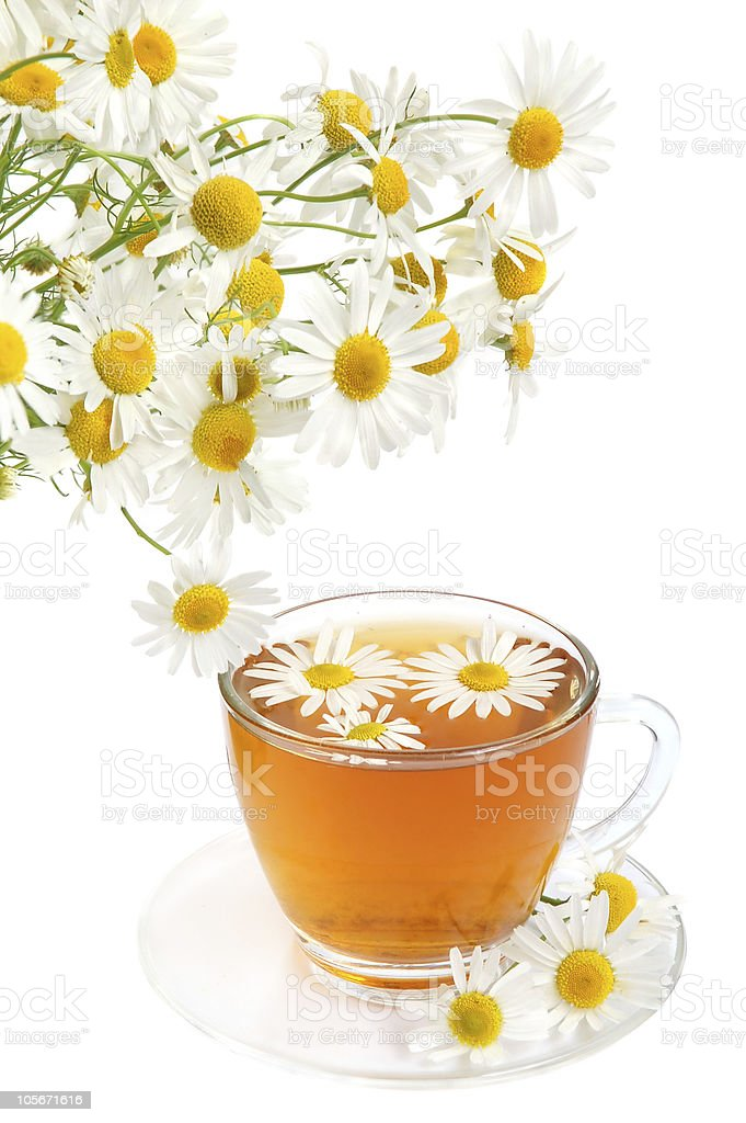 Herbal camomile tea royalty-free stock photo
